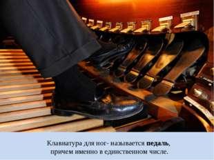 Клавиатура для ног- называется педаль, причем именно в единственном числе.