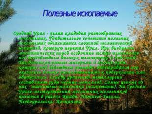 Полезные ископаемые Средний Урал - целая кладовая разнообразных ископаемых. У