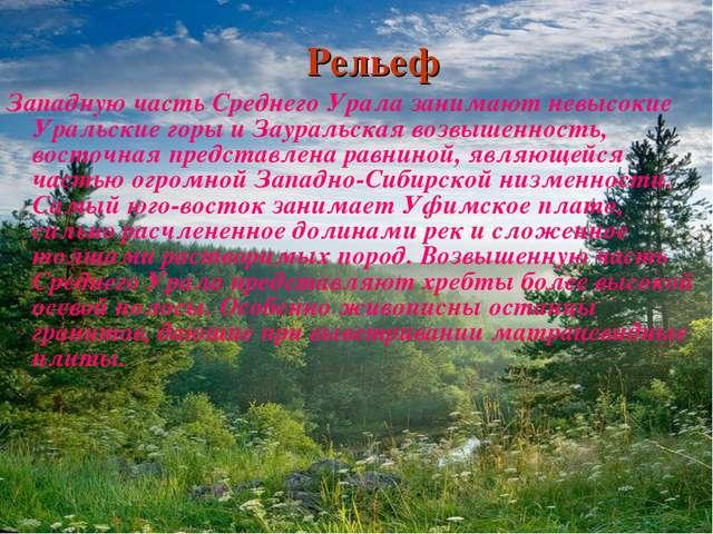 Рельеф Западную часть Среднего Урала занимают невысокие Уральские горы и Заур...