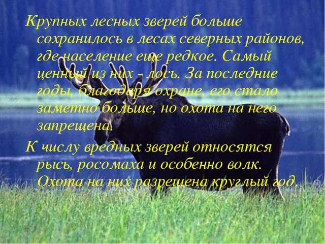 Крупных лесных зверей больше сохранилось в лесах северных районов, где населе...