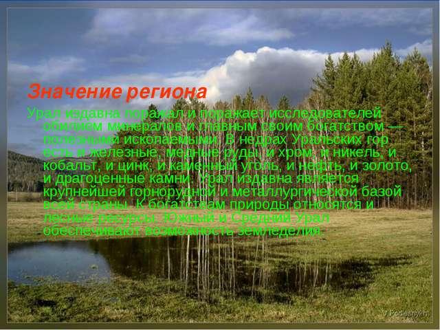 Значение региона Урал издавна поражал и поражает исследователей обилием минер...