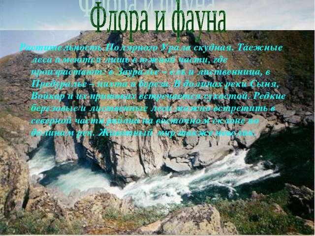Растительность Полярного Урала скудная. Таежные леса имеются лишь в южной час...