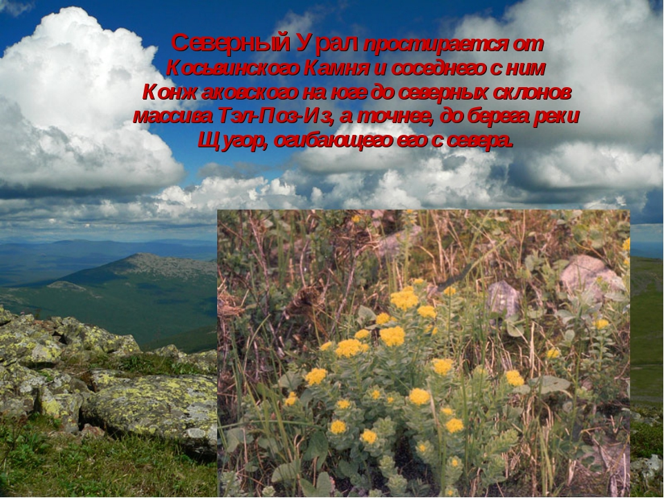 Северный Урал простирается от Косьвинского Камня и соседнего с ним Конжаковск...