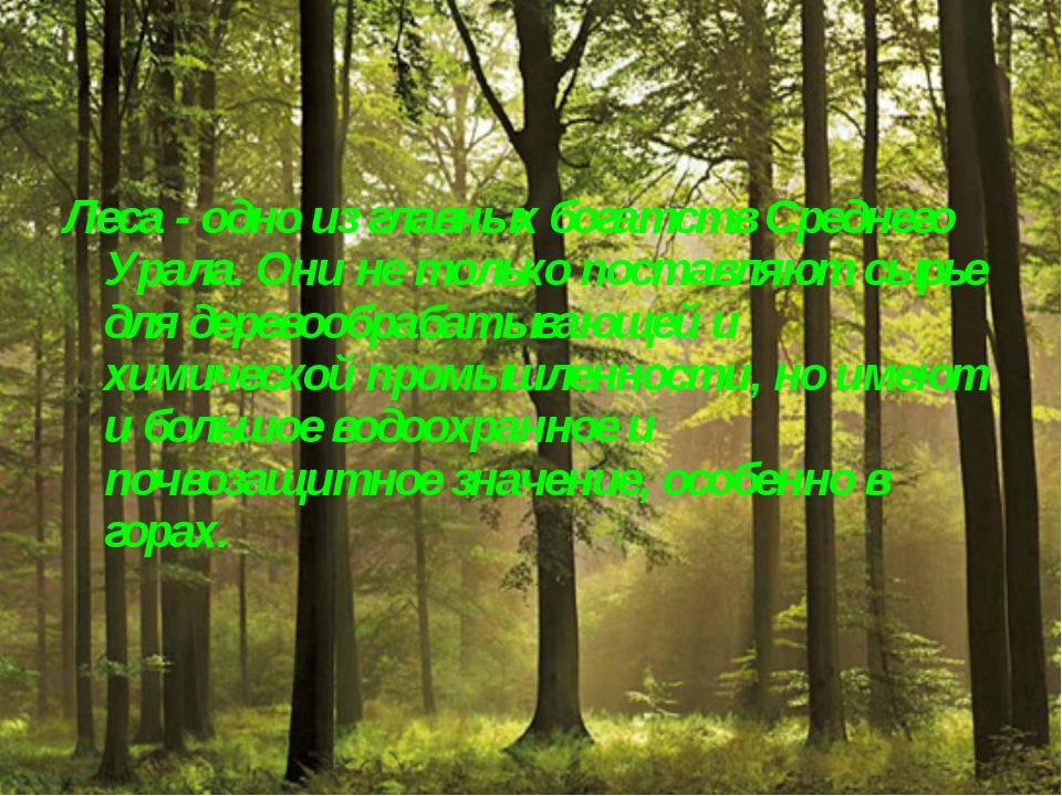 Леса - одно из главных богатств Среднего Урала. Они не только поставляют сырь...