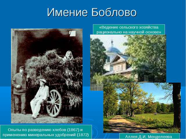 Имение Боблово Аллея Д.И. Менделеева Опыты по разведению хлебов (1867) и прим...