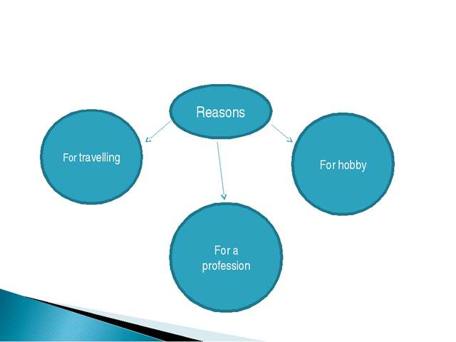Reasons For travelling For hobby For a profession