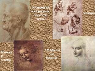 """Анатомический рисунок мужской головы Младенец Женская голова """"Мадонна на камн"""