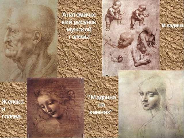 """Анатомический рисунок мужской головы Младенец Женская голова """"Мадонна на камн..."""
