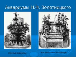 Аквариумы Н.Ф. Золотницкого Круглый аквариум Восьмигранный аквариум