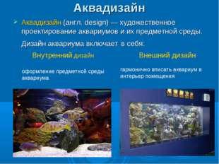 Аквадизайн Аквадизайн (англ. design)— художественное проектирование аквариум