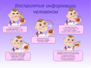 Восприятие информации человеком