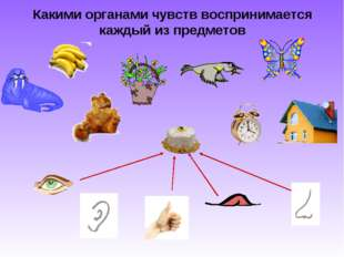 Какими органами чувств воспринимается каждый из предметов