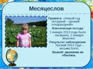 Месяцеслов Примета: «Новый год погодный – урожай плодородный». Фактическая по