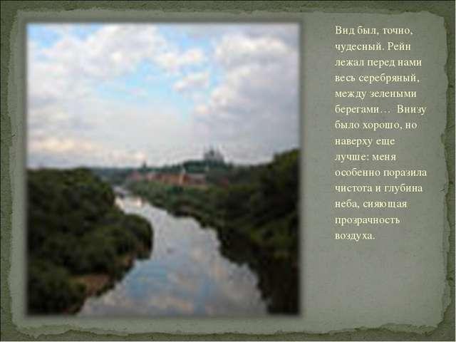 Вид был, точно, чудесный. Рейн лежал перед нами весь серебряный, между зелены...
