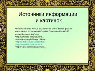 Источники информации и картинок Использование любых материалов сайта Музей фа