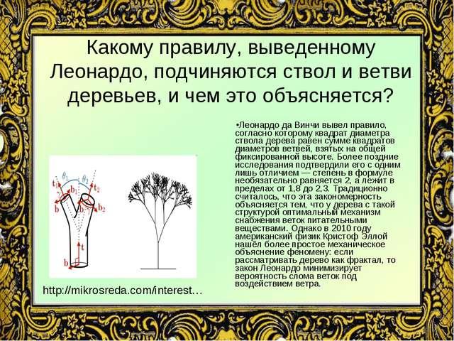 Какому правилу, выведенному Леонардо, подчиняются ствол и ветви деревьев, и ч...