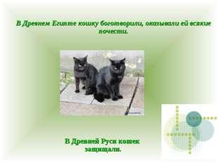 В Древнем Египте кошку боготворили, оказывали ей всякие почести. В Древней Ру