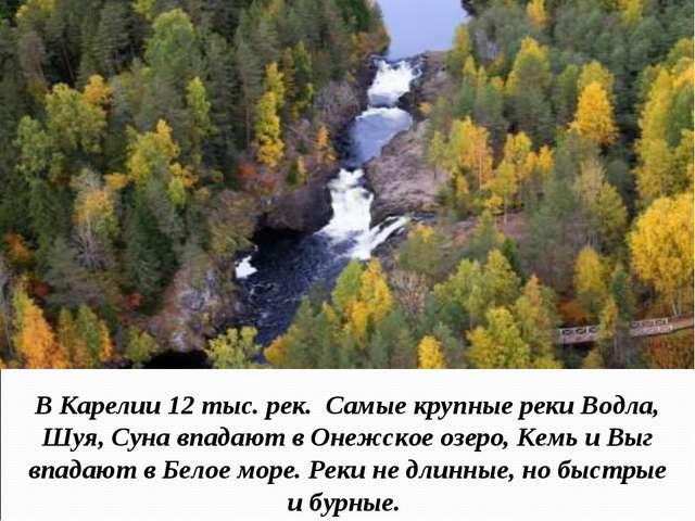 В Карелии 12 тыс. рек. Самые крупные реки Водла, Шуя, Суна впадают в Онежское...