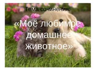 Тема сочинения: «Моё любимое домашнее животное»