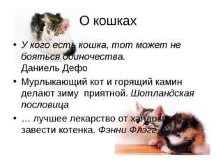 О кошках У кого есть кошка, тот может не бояться одиночества. Даниель Дефо Му