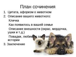 План сочинения Цитата, афоризм о животном Описание вашего животного: Кличка К