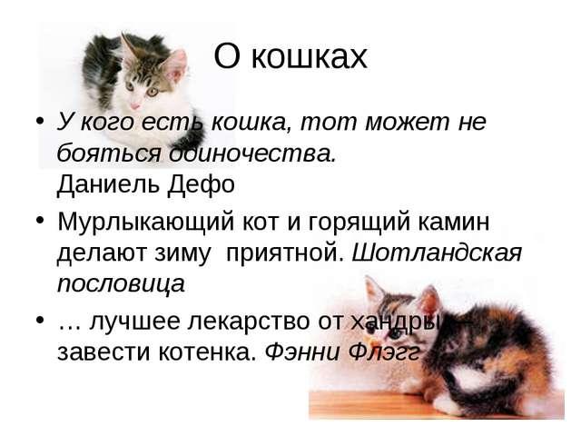 О кошках У кого есть кошка, тот может не бояться одиночества. Даниель Дефо Му...
