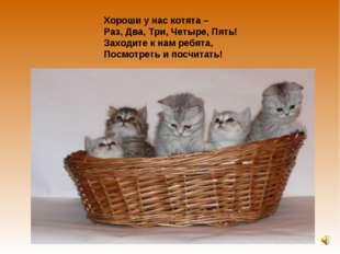 Хороши у нас котята – Раз, Два, Три, Четыре, Пять! Заходите к нам ребята, Пос