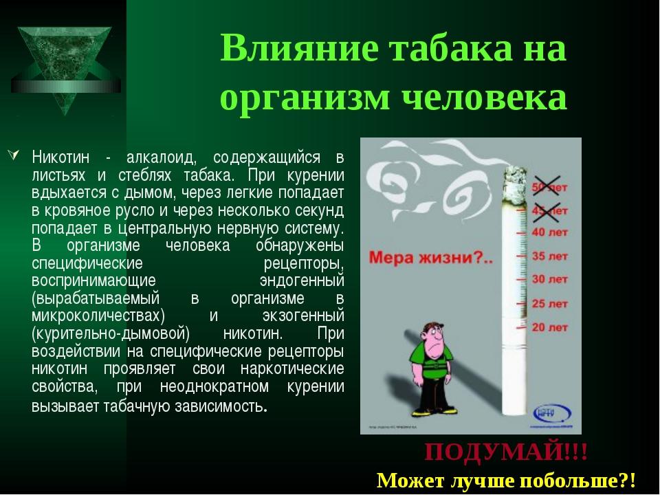 Влияние табака на организм человека Никотин - алкалоид, содержащийся в листья...