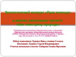 Муниципальное автономное общеобразовательное учреждение «Зиновская средняя об