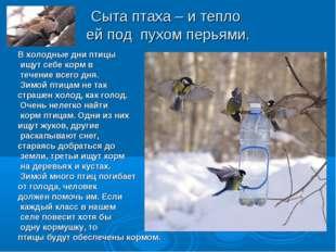 Сыта птаха – и тепло ей под пухом перьями. В холодные дни птицы ищут себе кор