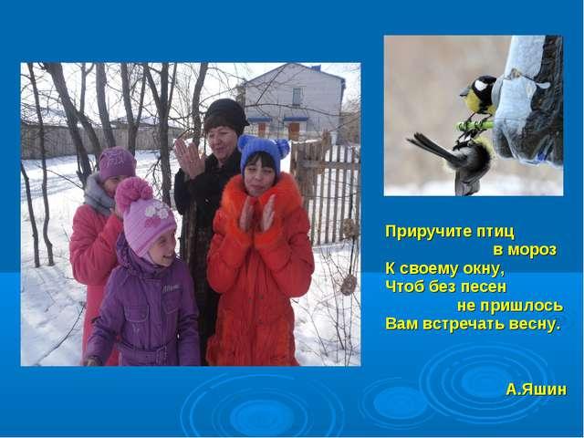 Приручите птиц в мороз К своему окну, Чтоб без песен не пришлось Вам встречат...