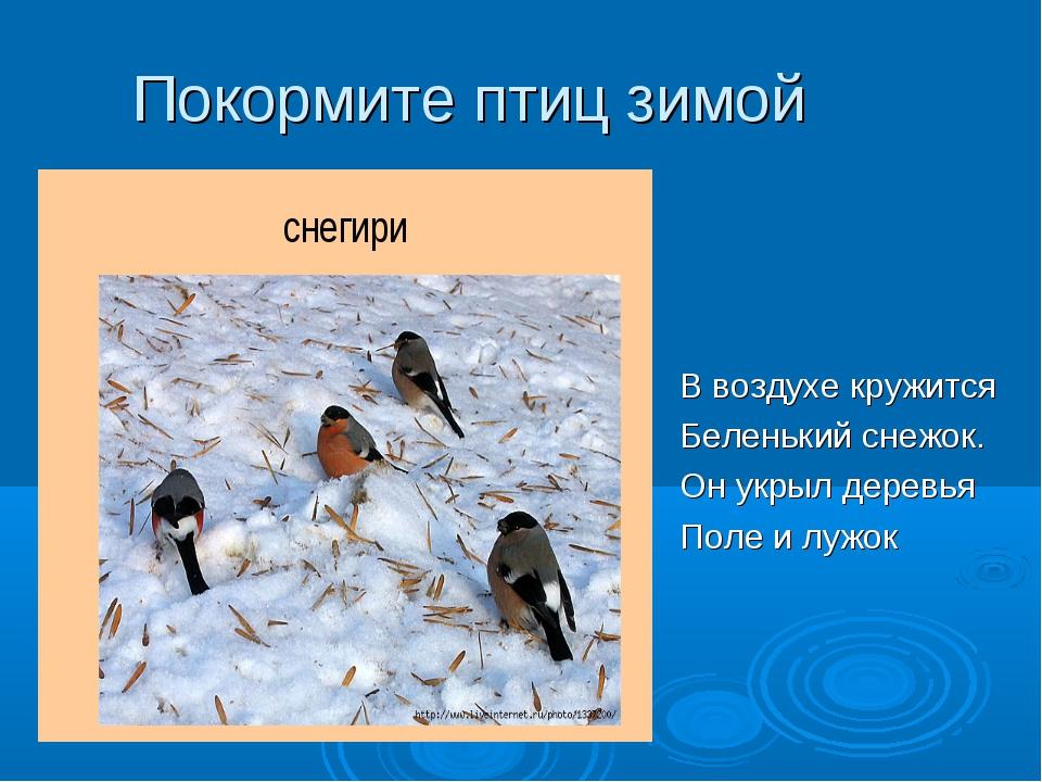 Покормите птиц зимой В воздухе кружится Беленький снежок. Он укрыл деревья По...