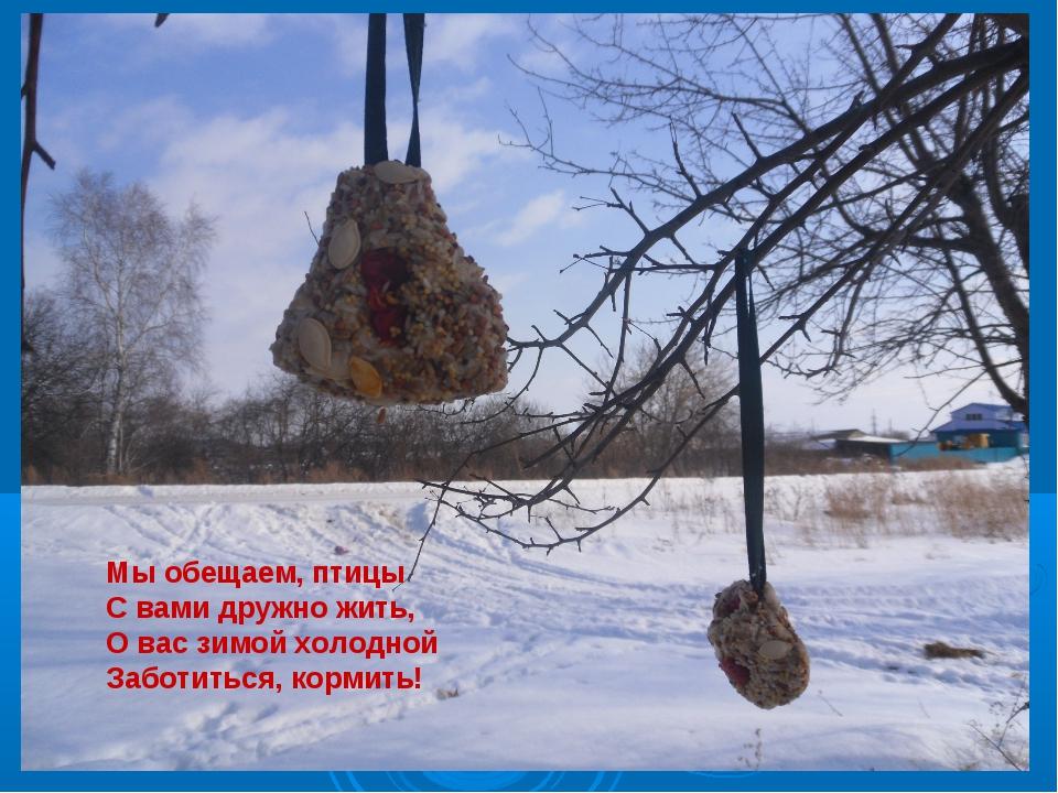Мы обещаем, птицы С вами дружно жить, О вас зимой холодной Заботиться, корми...