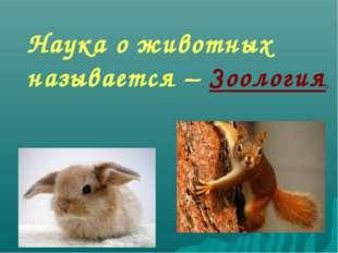 Наука о животных называется – Зоология.