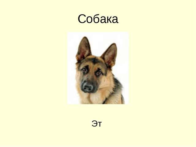 Собака Эт