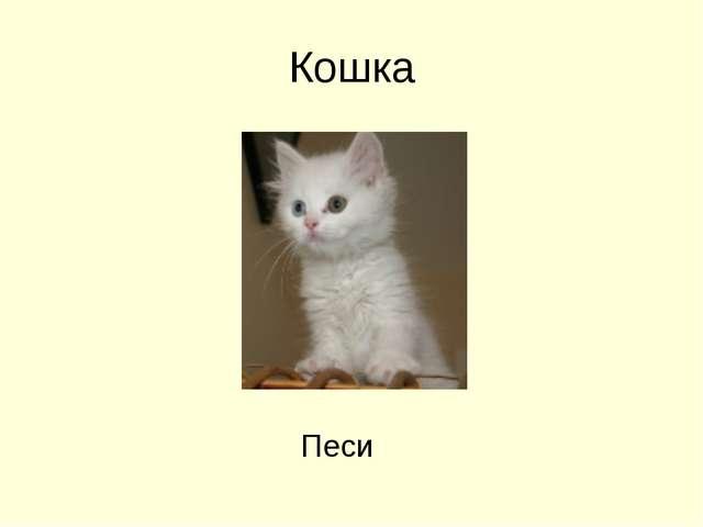 Кошка Песи
