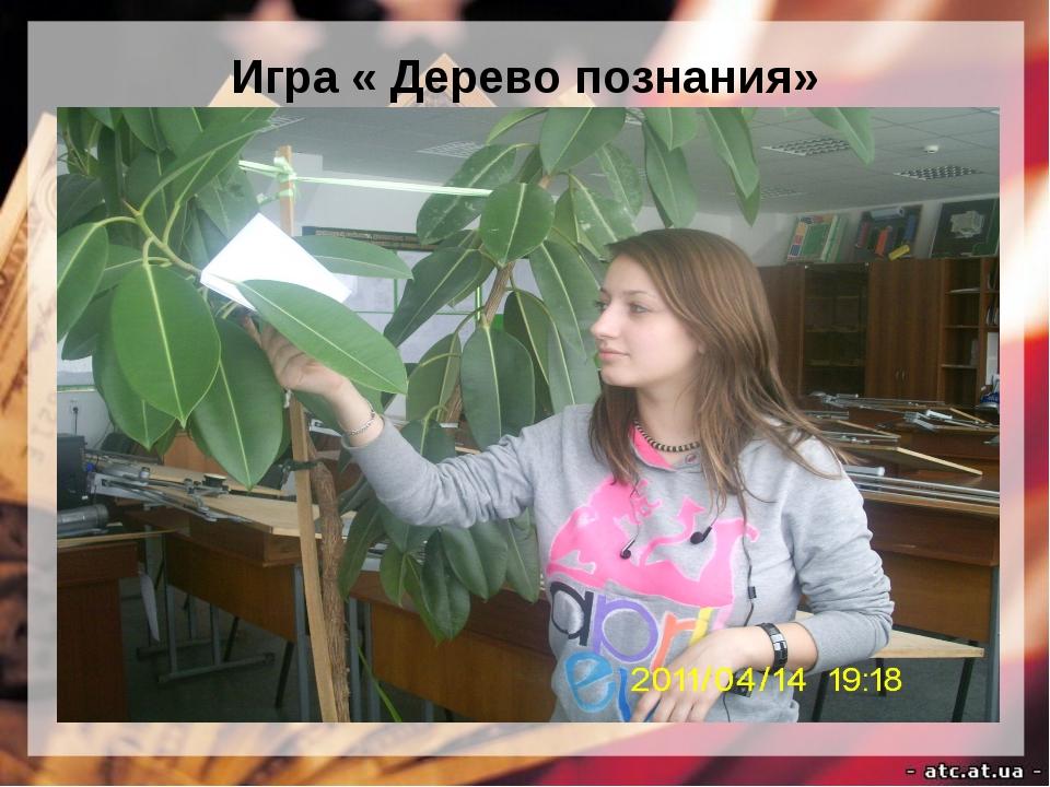 Игра « Дерево познания»
