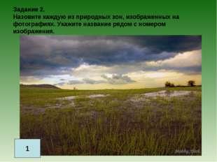 Задание 2. Назовите каждую из природных зон, изображенных на фотографиях. Ука