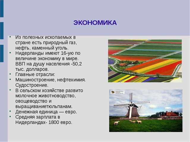 ЭКОНОМИКА Из полезных ископаемых в стране есть природный газ, нефть, каменный...