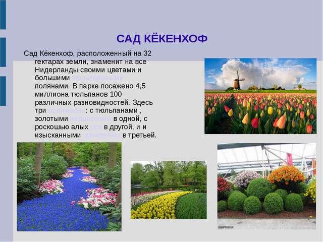 САД КЁКЕНХОФ Сад Кёкенхоф, расположенный на 32 гектарах земли, знаменит на вс...