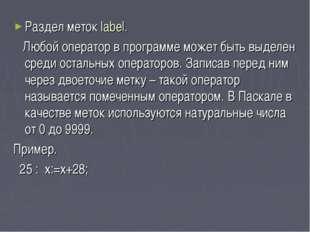 Раздел меток label. Любой оператор в программе может быть выделен среди остал