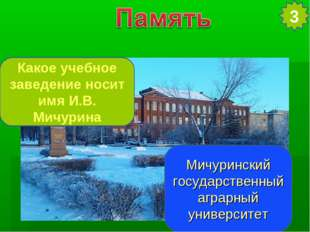 Какое учебное заведение носит имя И.В. Мичурина Мичуринский государственный а