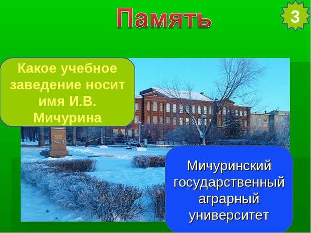 Какое учебное заведение носит имя И.В. Мичурина Мичуринский государственный а...