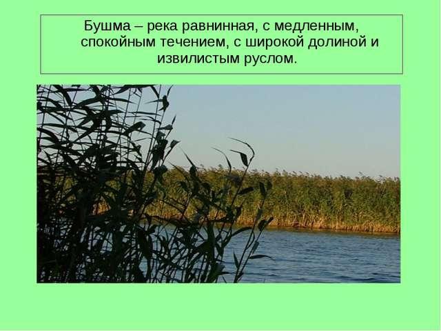 Бушма – река равнинная, с медленным, спокойным течением, с широкой долиной и...