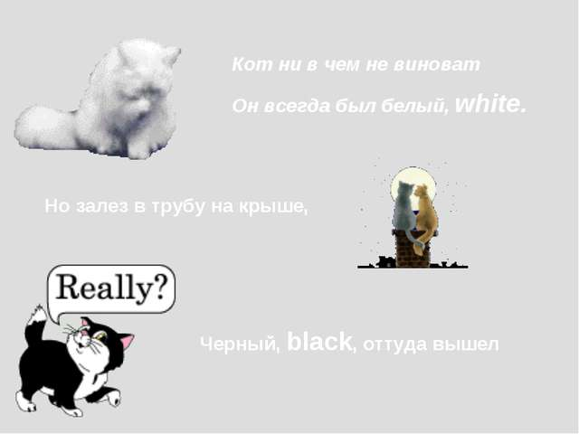 Кот ни в чем не виноват Он всегда был белый, white. Но залез в трубу на крыше...