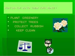WHAT DO YOU DO TO CLEAN YOUR PLACE ? PLANT GREENERY PROTECT TREES COLLECT RUB