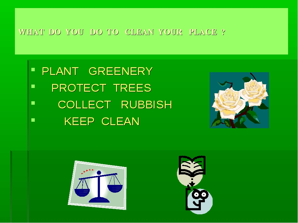 WHAT DO YOU DO TO CLEAN YOUR PLACE ? PLANT GREENERY PROTECT TREES COLLECT RUB...