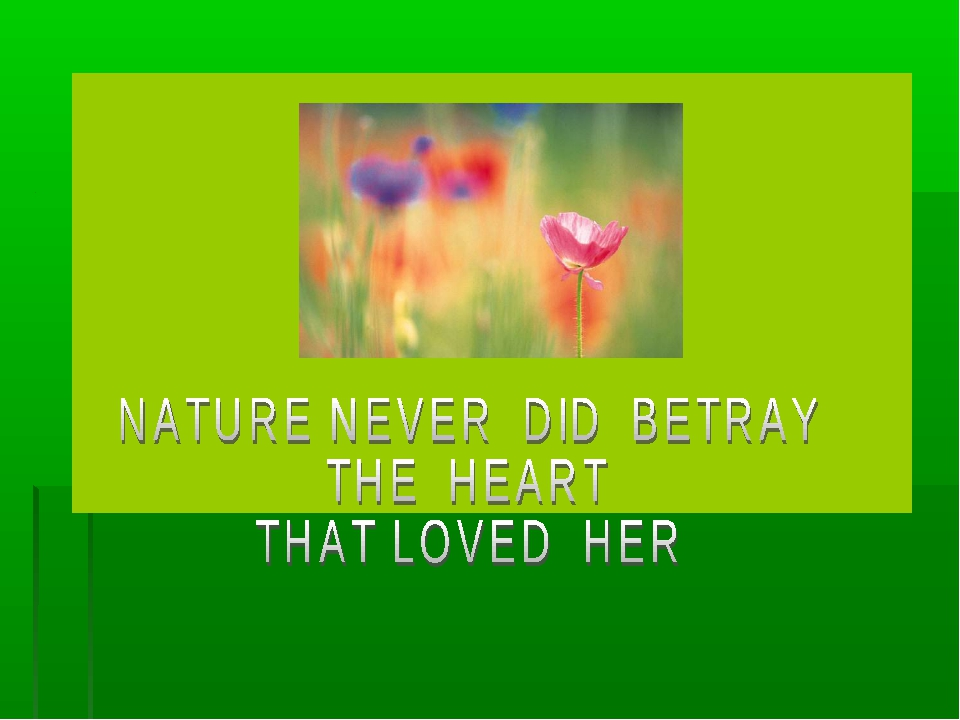 nature never did betray the heart that loved her meaning Knowing that nature never did betray the heart that loved her tis her privilege from eng 1102 at highlands ga.