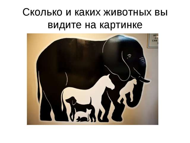 Сколько и каких животных вы видите на картинке