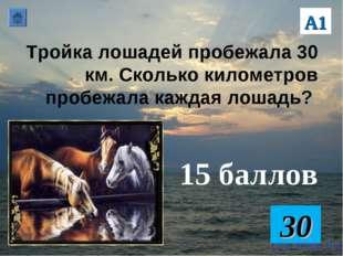 Тройка лошадей пробежала 30 км. Сколько километров пробежала каждая лошадь? 1
